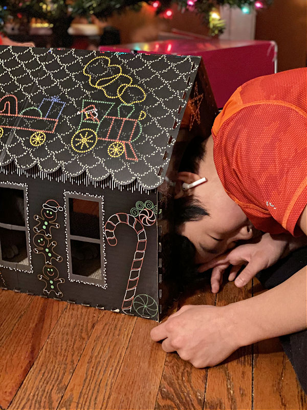 kid in a cat scratching house