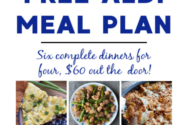 Mashup Mom ALDI Meal Plan week of 1/17/21