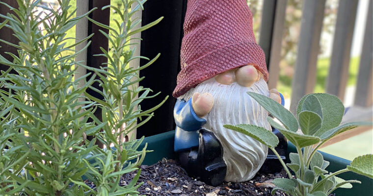 Garden Gnomes, ALDI Outdoor Rugs… what Finds did YOU get this week?
