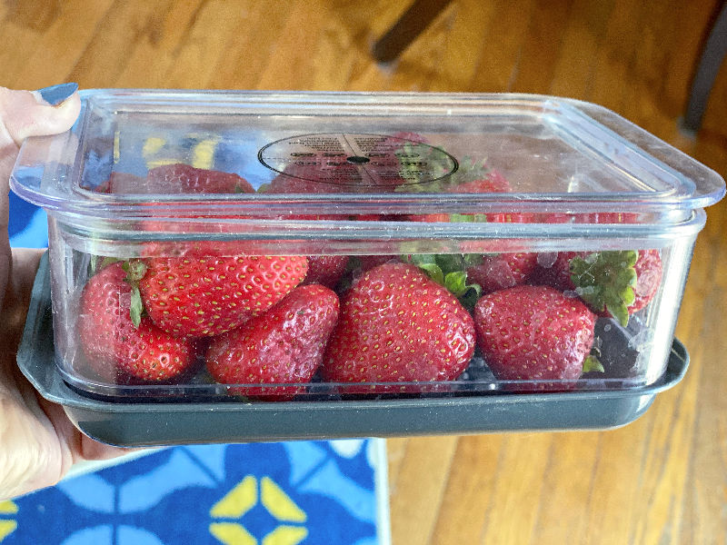 Berry keepers, breakfast bowls, and pickle chips: ALDI Finds 7/28/21